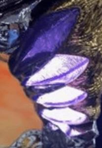 猛獣王王者の咆哮の天井に関する参考画像